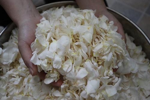 バラ花からのエキス抽出