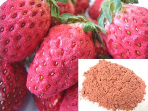 商品:イチゴ乾燥品とイチゴのパウダー