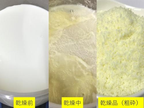 乾燥装置:ヤギの乳の乾燥