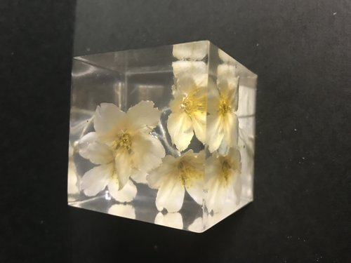 生花の透明樹脂キューブ