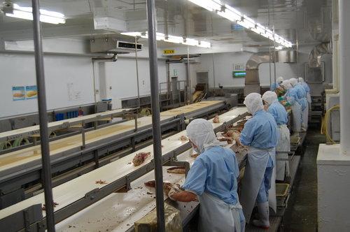 冷凍魚から製品化まで一貫生産
