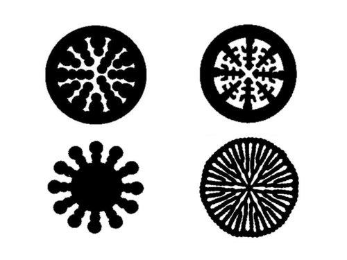 プラスチック芯の断面パターン例